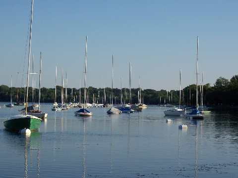 Sailboats on Lake Harriet in Minneapolis MN