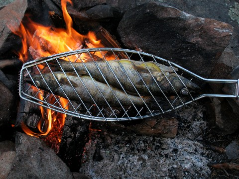 Minnesota walleye on campfire