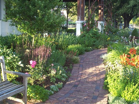 garden along north shore in Wayzata