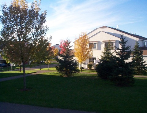 wide open areas plus trees in eden prairie mn townhome association